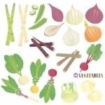 エシャロットのレシピを一挙公開!どんな料理が美味しい?