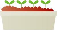 クレソン栽培用のプランターを、身近な素材で手作りしてみよう!