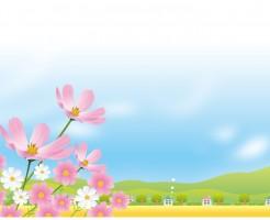 福岡県内で子供が遊べるコスモス畑をご紹介!