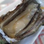 牡蠣にあたるとでる症状と期間は?食中毒と思ったらすべきこと!